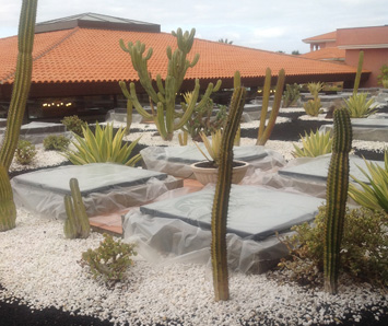 Green roof aggregates